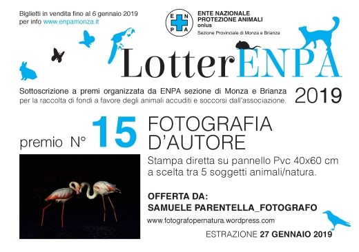 cartolina 15 lotteria ENPA 2019